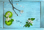 Green apples and apple flowers on blue wooden table — Stock Photo