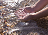 Hands dipped in the sea — Stock Photo