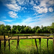 Summer landscape with old bridge — Stock Photo #51569957