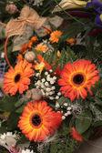 Decoratie van de bloem — Stockfoto