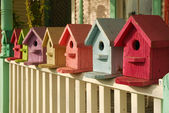 What Color is Your Birdhouse — Stock Photo