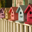 What Color is Your Birdhouse — Stock Photo #33924857