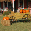 Fall Harvest Yard Decor — Stock Photo