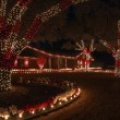 Stock Photo: Red and White Christmas Lights