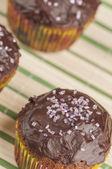 Chocolate muffins series 04 — Stock Photo