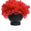 Stock Photo: Red Curly Clown Wig