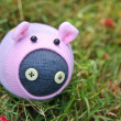 Stock Photo: Handmade piggy sock doll on grass