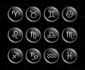 Zodiac signs glassy vector collection — Stock Vector