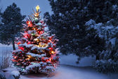 Brightly lit snow covered Christmas tree welcomes Christmas morning — Stock Photo