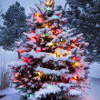 Brightly Lit Snow Covered Christmas Tree After Winter Storm — Stock Photo