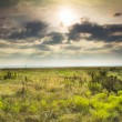 Dramatic Sunrise over the Kansas Tallgrass Prairie Preserve National Park — Stock Photo #30873443