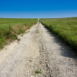 Midwestern Rural Country Road in Kansas Tallgrass Prairie Preserve — Stock Photo