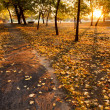 Walking path at sunrise — Stock Photo