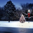 Magically Lit Tree Glows Brightly on Snow Covered Christmas morning — Zdjęcie stockowe