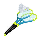 Tennis rackets and shuttle isolated — Stock Vector