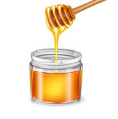 Honey with dipper pouring in jar — Stock Vector