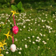 Stock Photo: Easter eggs on branchlet with garden in background
