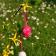 Stock Photo: Vertical easter eggs on branchlet with garden in background