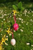 Vertical easter eggs on branchlet with garden in background — Stock Photo