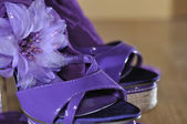 Violet heels with flower — Stock Photo