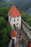 Top view on Castle Kokorin, Europe, Czech Republic — Stock Photo
