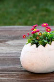 Easter Egg with flowers — Stock Photo