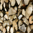 Cut logs — Stock Photo