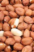 Raw Peanuts — Stock Photo