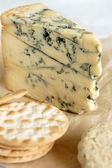 Stilton cheese — Stockfoto