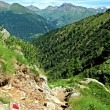 Mountain Path View, Summer - Italian Alps Landscape (Ponte di Legno, Lombardia). Vertical Photo. — Stock Photo