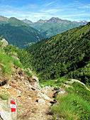 Mountain Path View, Summer - Italian Alps Landscape (Ponte di Legno, Lombardia). Vertical Photo. — Foto Stock