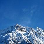 Snowy Rocky Mountain Peaks and Blue Sky - Italian Alps Landscape (Ponte di Legno, Lombardia) — Stock Photo #31549207