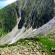A Wave of Stone. Mountain Fractured Side - Italian Alps — Stock Photo