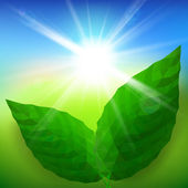Vector green leaf ecology on lighting blue and green background — Stock Vector