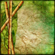 Stock Photo: Vintage bamboo background