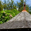 Roof, tropical greenery and blue sky — Stock Photo #38656169