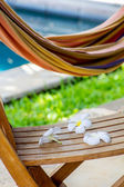 Hammock and tropical flowers — Stock Photo