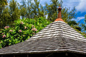 Roof, tropical greenery and blue sky — Stock Photo