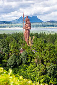 Statue on the mountain in tropics — Stock Photo