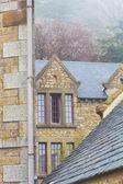 árbol floreciente de techos ans en el antiguo castillo — Foto de Stock