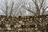 Brick wall of the castle — Foto de Stock