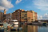 Camogli harbor — Photo