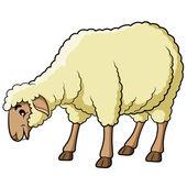 Sheep Cartoon — Vector de stock
