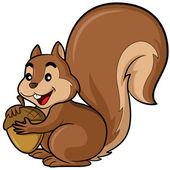 Squirrel Cartoon — Stock Vector