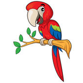Parrot Cartoon — Stock Vector