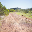 Stock Photo: Picture of track in arid landscape