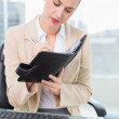 Focused attractive businesswoman writing on her agenda — Stockfoto #31568059
