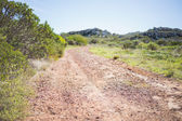 Picture of track in arid landscape — Stock Photo
