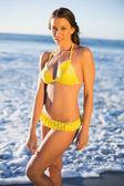 Mujer atractiva en bikini posando en el mar — Foto de Stock