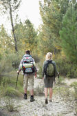 Rear view of a fit young couple exploring the woods — Stock Photo